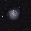 NGC3184,                                Dave (Photon)