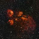 Cat's Paw Nebula,                                Laurence Pap