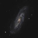 NGC 3198,                                Gary Imm