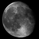Mosaico Lunar,                                Omar Martinez