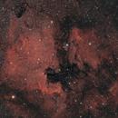 NGC 7000 under very good condition,                                Stephan Linhart