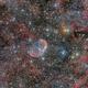 Crescent Nebula wide field,                                Paolo Demaria