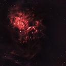 Flaming Star Nebula,                                Brent Jaffa