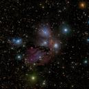 "NGC 2170 : The ""Angel"" nebula in Monoceros - LRGB,                                Daniel.P"