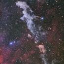 IC2118,                                MakikoSugimura