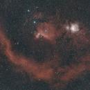 Barnard's loop,                                David
