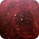 Rosette Nebula (NGC 2237),                                bibistargate