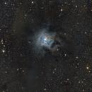 NGC7023 La nébuleuse de l'Iris,                                LEPANOT