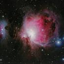 Orion Nebula,                                Mohammad Rahimi