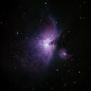 M42 Orion Nebula,                                Darren (DMach)