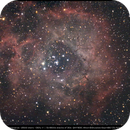Rosette Nebula,                                minoSpace