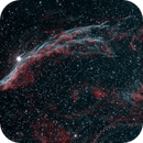 NGC 6960 Veil Nebula West,                                Richard Pattie