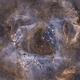 Rosette nebula SHO,                                Philippe Oros