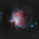 Orion and the Running Man Nebula,                                Nicholas Bradley