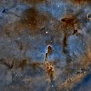 IC1396 en SHO,                                Georges