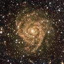 IC342 RGB + HA,                                Unclevodka