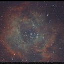 30min LiveStack Filter Test on Rosette Nebula with 70% Moon nearby,                                minoSpace