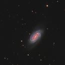 NGC2903,                                Roberto Sartori