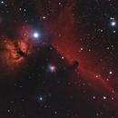 Horsehead Nebula & Flame Nebula,                                Chief