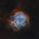 NGC 2244 Rosette Nebula in RGB-SHO,                                Roland Schliessus