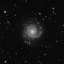 M74,                                David Johnson