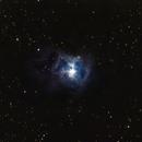 Nébuleuse de l'iris (NGC 7023),                                Julien Bourdette