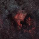 NGC 7000,                                Claudio Giordani
