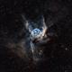 Thor's Helmet (NGC 2359),                                Wintyfresh