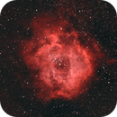 Rosette HOO at 135 mm,                                Ben