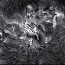 chromospheric magma ( 29.09.2014) AR2172-2173,                                jp-brahic