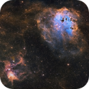 Spider ( IC 417 ) and Tadpole ( IC 410 ),                                Chuck's Astrophot...