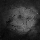 IC 1396 (645 Reducer),                                Craig Prost