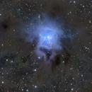 NGC7023,                                Andrei Ioda