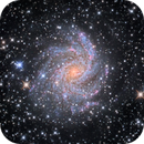 NGC 6946: The Fireworks Galaxy,                                Enrique Arce