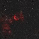 Jellyfish Nebula (IC 443) and Monkeyhead Nebula (NGC 2174) Widefield,                                AstroMichael