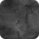 First light - Elephant trunk nebula,                                John Mart