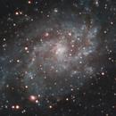 M33 Triangulum Galaxy,                                jeff