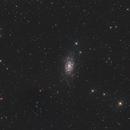 NGC2403,                                Michael Völker