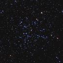 M38,                                Gary Imm