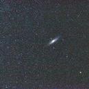 M31 mit 50mm ,                                Dieter Berger