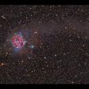 IC 5146 The Cocoon Nebula,                                Göran Nilsson