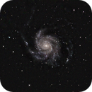 M101,                                Dave Bloomsness