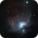 M42,                                TOMMY DOMINGUE
