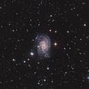 NGC 2835,                                Chris Parfett @astro_addiction