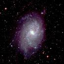 M33 Triangulum Galaxy,                                Chewhakka