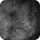 IC 1396 Elephant trunk nebula,                                peterfritzenwallner