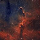 Elephant Nebula in Narrowband Blend,                                Sean Molony