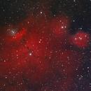 NGC 6559,                                Colin
