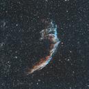 NGC6992 LSHO,                                John Massey