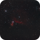 Horsehead Nebula Canon FD200mm,                                Christiaan Berger